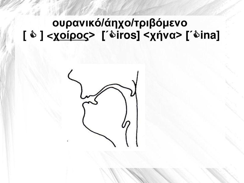 ουρανικό/άηχο/τριβόμενο [  ] <χοίρος> [΄iros] <χήνα> [΄ina]